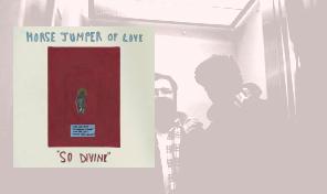 Horse Jumper Of Love: 'So Divine'