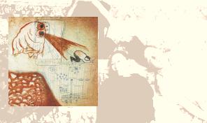 Deerhoof: 'Future Teenage Cave Artists'